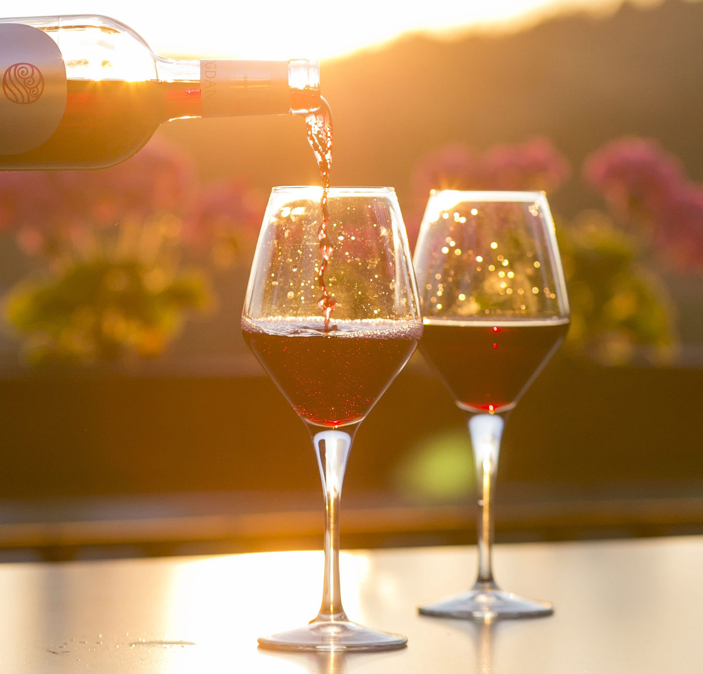 vin rouge servi dans 2 verres à dégustation